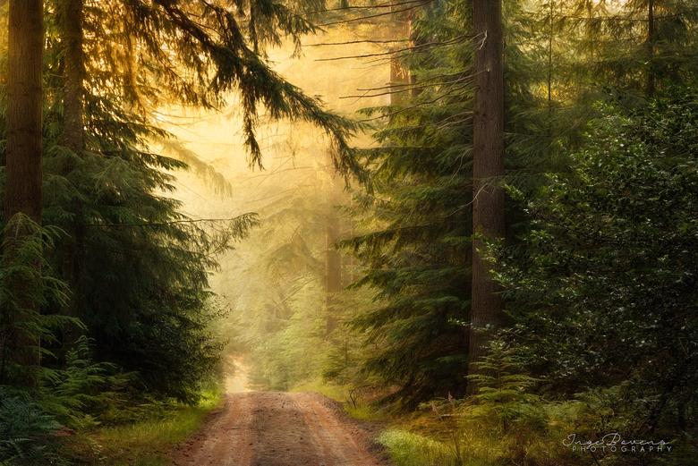 Tranquility. - Mensen vragen mij wel eens waar ik mijn inspiratie vandaan haal. Dat kan vanalles zijn, maar één van die dingen zijn schilderijen, en d