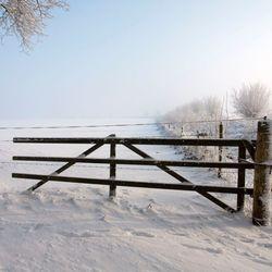 Hek in de sneeuw