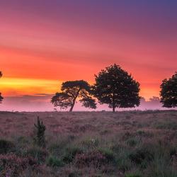 Drenthe Colours