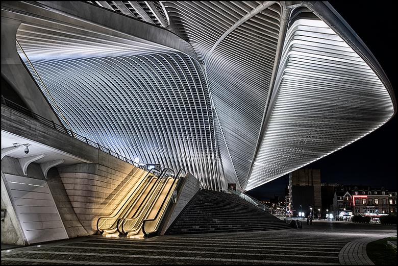 Guillemins 05 - Wanneer je het station Guillemins in Luik nadert, wordt het je langzaam maar zeker duidelijk hoe groot dit fraaie bouwwerk, van de Spa