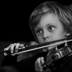 The Violin Player...