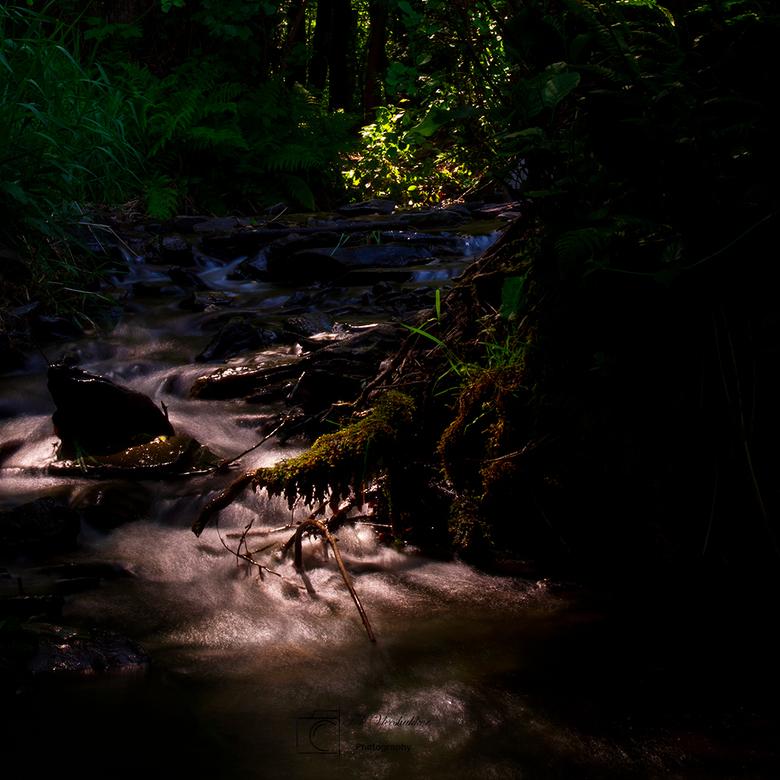 waterval - het is donker in het bos, maar de zon weet er toch door heen te prikken.