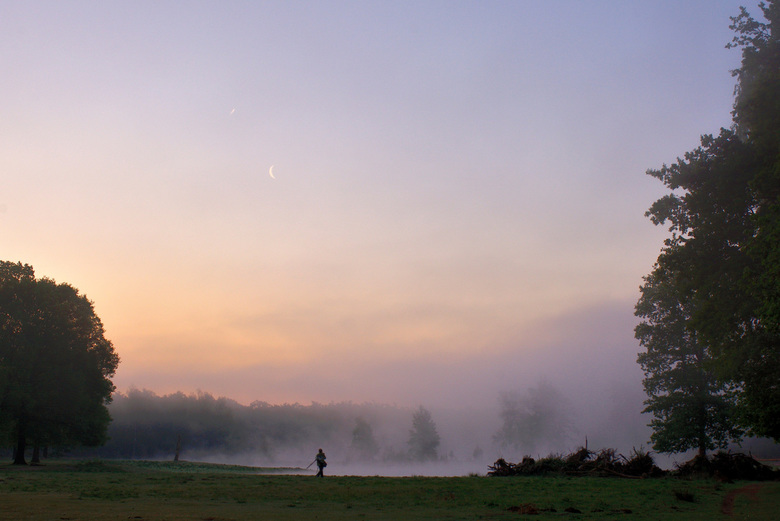 Misty Moment!