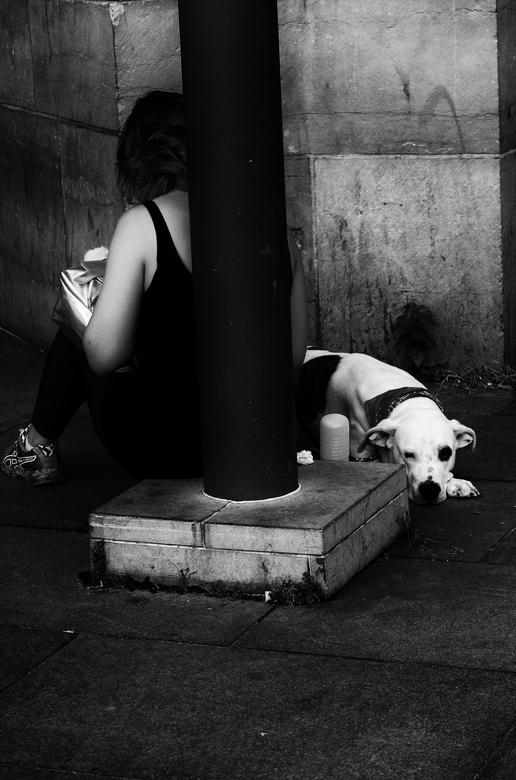Hondsbraaf - groot zien aub<br /> <br /> Het zwarte oog van de waarheid<br /> ligt verscholen in donkere hoeken<br /> kom mij niet te na.<br /> <
