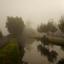 Molen de Haas in de mist