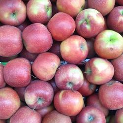 Daar zijn de appeltjes van oranje weer....