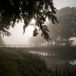 Schipbeek in het ochtendlicht