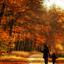 lekker aan de wandel in de herfst zon