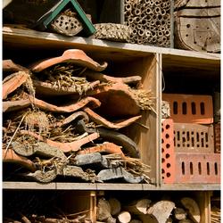 Insecten hotel Heusden...