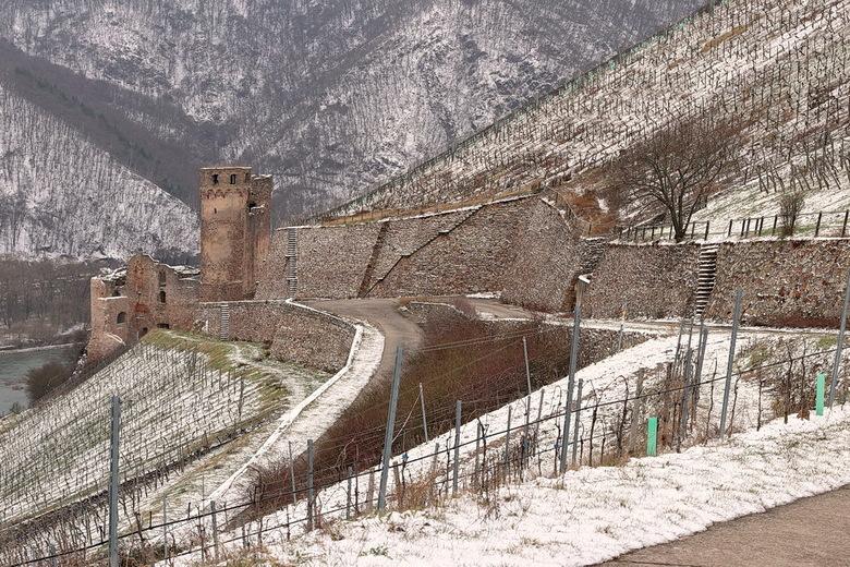 Brucht Ehrenfels. - De imposante ruïne is het overblijfsel van een machtige 13de eeuws burcht die in 1689 werd verwoest.<br /> De Burcht Ehrenfels is