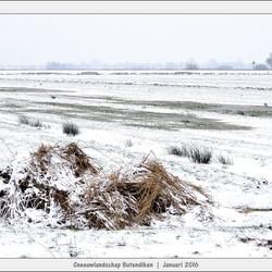 Sneeuwlandschap - Butendiken - Smalle Ee - II