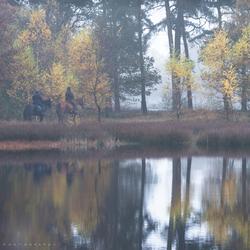 Herfst rit