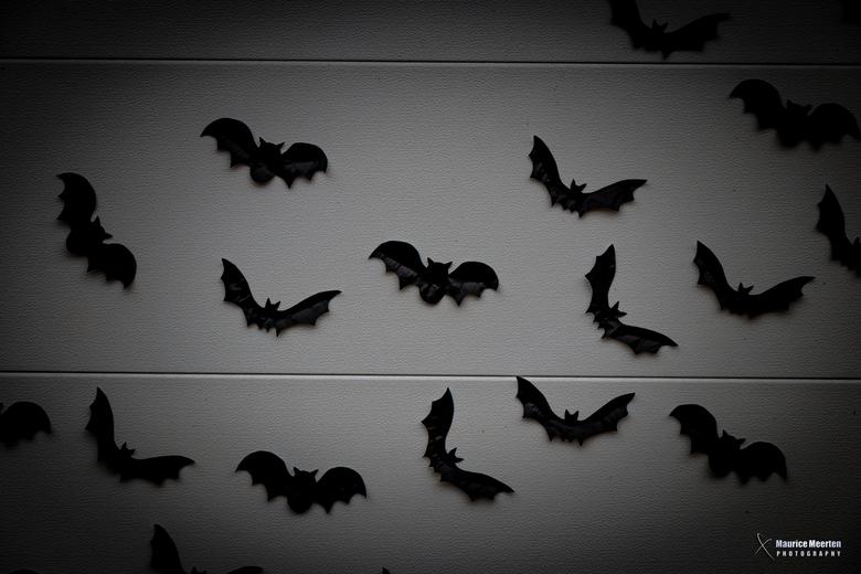 Garagepoort met vleermuisjes... it's Halloween!