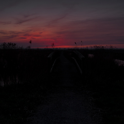 Ondergaande zon (4)