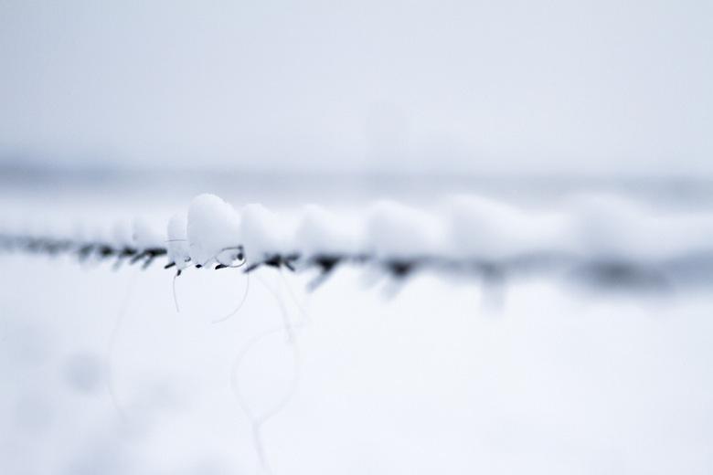 snow 2014 -