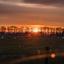 Schapen ontwaken met een prachtige zonsopkomst