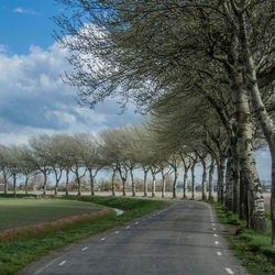 Berken in Westfriesland