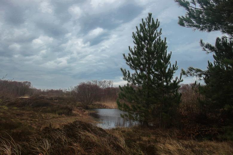 Zwanenwater  - Het weer in Callantsoog was gistermiddag niet zo mooi als ik had gehoopt. Maar donkere luchten waar de zon probeert te komen geven eige