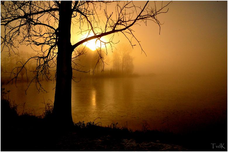 Koper - Winterlandschap met koperen gloed in de vroege mistige ochtend. Blazerkolk bij Kampen.