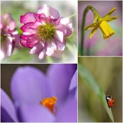 De lente geeft je energie