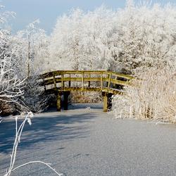 Beetje Winter 2