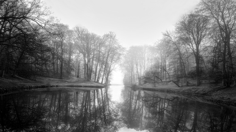 Foggy Mirror B:W - Nice foggy pano in Elswout,NL