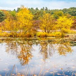 Herfst - weerspiegeling -