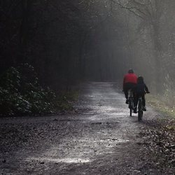 fietsers in de ochtendmist