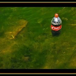 Milieu schade