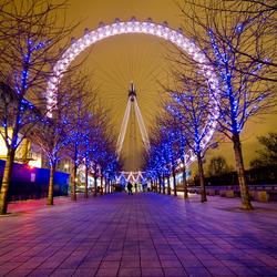 London Eye @Night