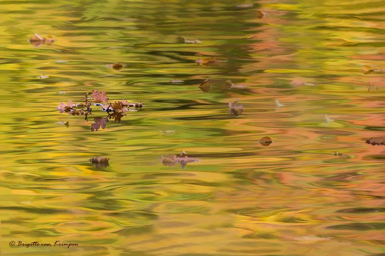 Autumn Reflections - Hoe simpel en mooi kan de natuur vaak zijn
