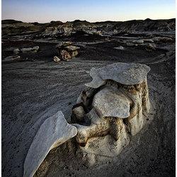 rock'o'saurus