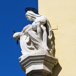 Udine 5