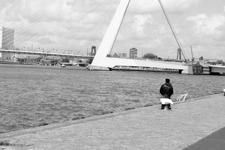 Erasmus - Erasmusbrug, Rotterdam.<br /> Alle commentaar is welkom.<br /> Gr, Marijn
