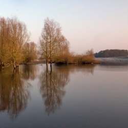 IJsseldijk bij Hengforden
