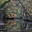 Meander in de Boven Slinge
