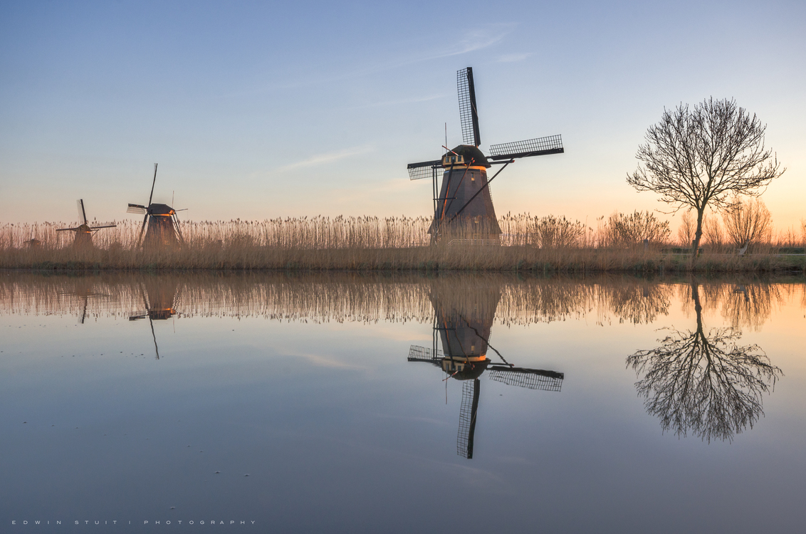 Hollandse spiegel