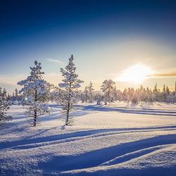 Lapland 2 Joop Lankhaar