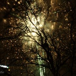 Goodbye 2012, Hello 2013!
