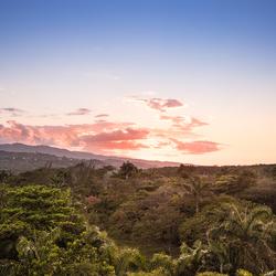 zon die onder gaat in de jungle jamaica