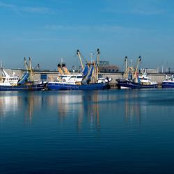 Zeeuwse Visveilingen