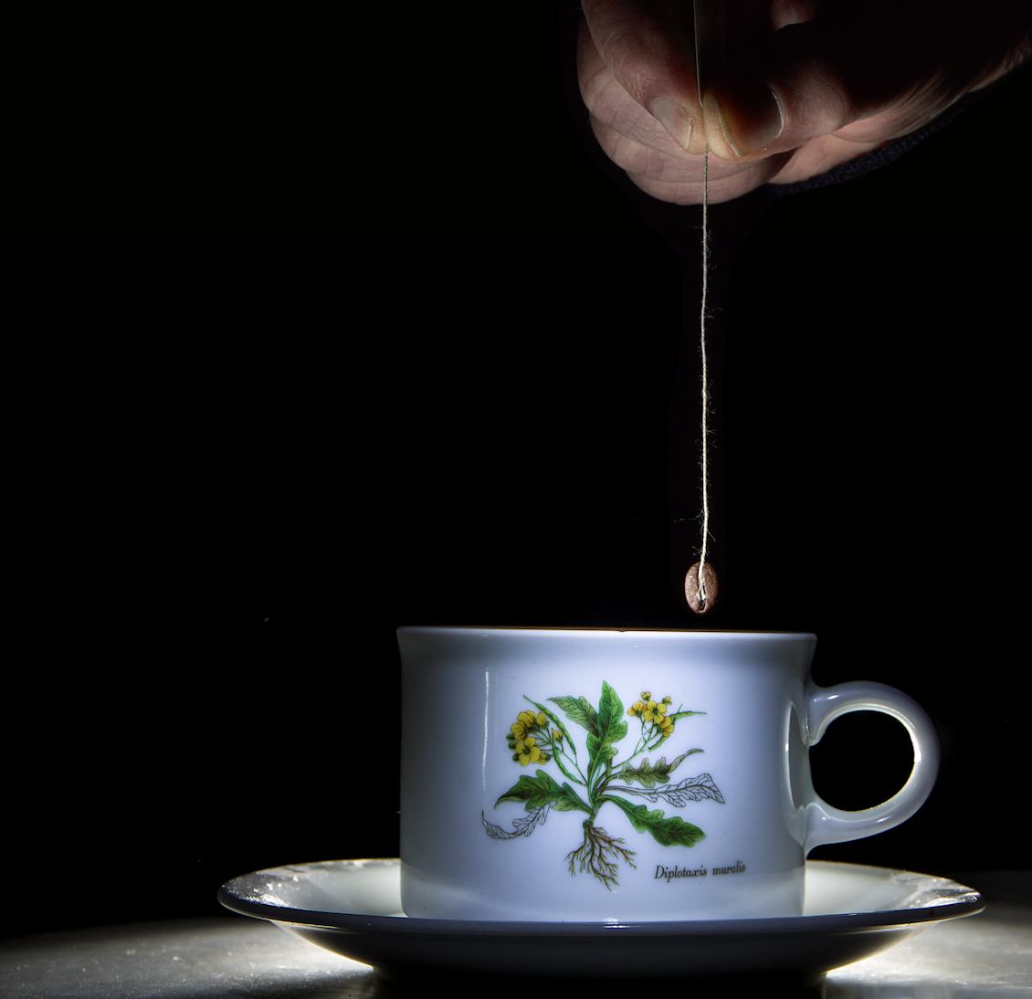 Zoooo . . . . . eerst een bak koffie