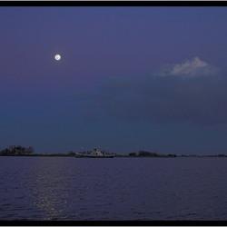 Moonlightshadow