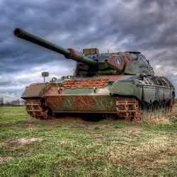 Leopard-1_2.