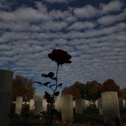 Canadees kerkhof Groesbeek 2