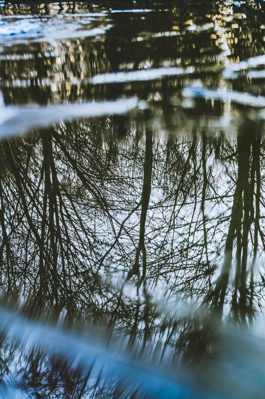 Reflectie in ijs - Dit is een reflectie in het ijs. Een deel van het water was al ontdooid maar er lag nog ijs.