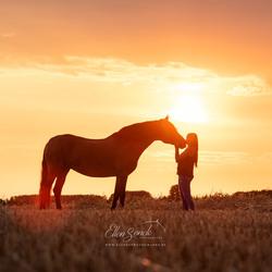Lovely Magical Sunset