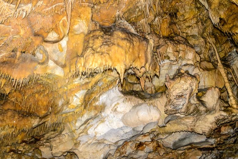 drake nest-(dirou) (1 van 1) - Grotten Van Dirou (Peleponnese,Griekenland