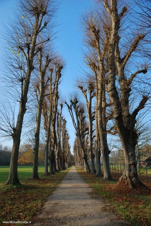 Landgoed Elswout - bij Aerdenhout.