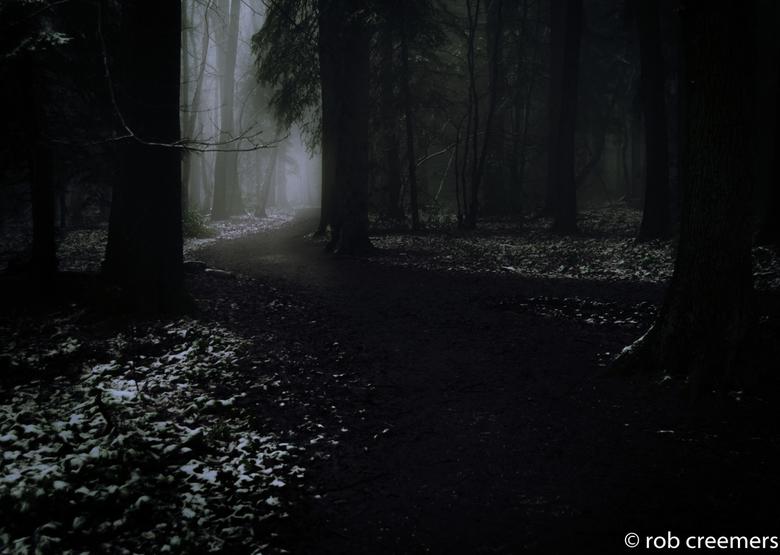 winterdarkness - donker winterbos
